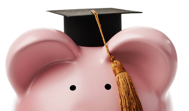 Pink piggy bank staring at camera and wearing mini graduation cap