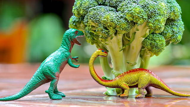 Two toy dinosaurs posed next to a large head of broccoli as if they're eating it.