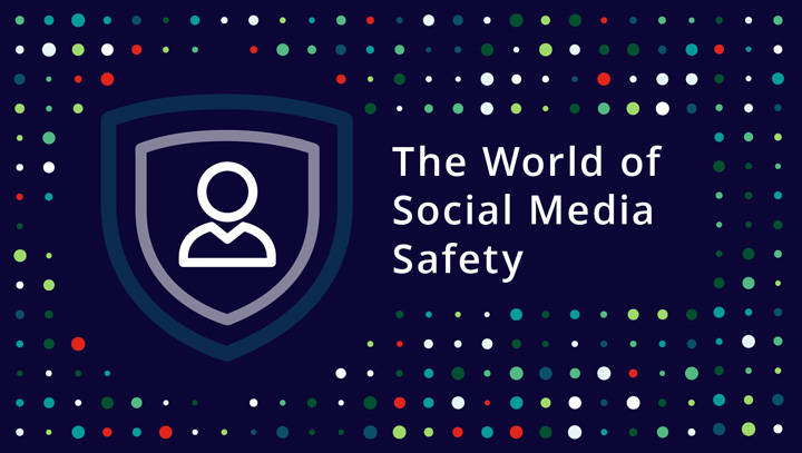 The World of Social Media Safety infographic.