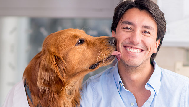 Financing for Fido: Cost of Owning a Dog